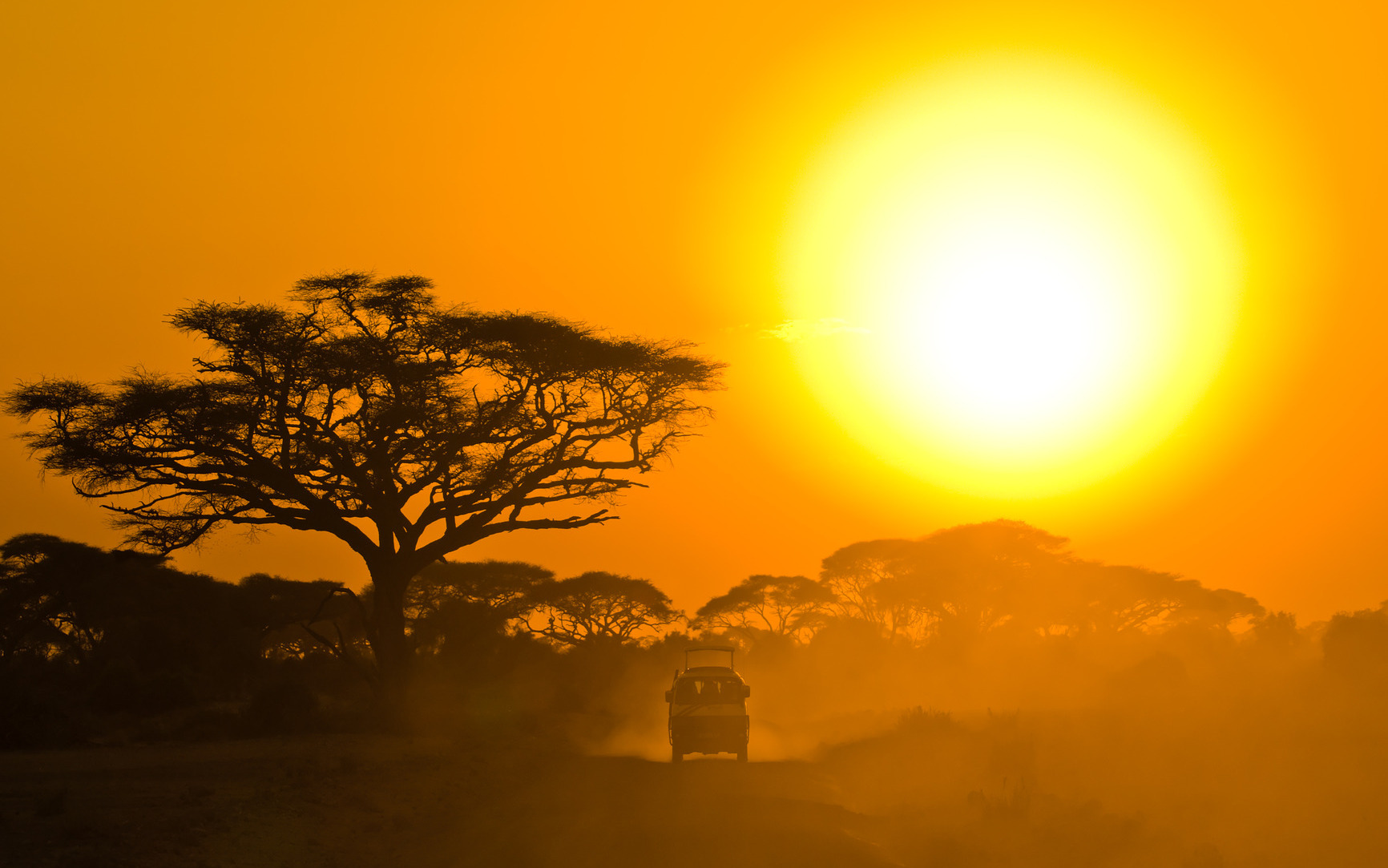 Safari jeep driving through the savannah in the sunset • Safari Holidays by Holiday Hamster