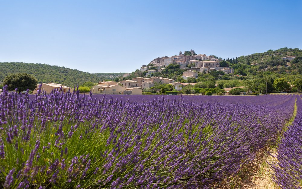 Provence, France by Holiday Hamster