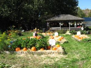 Halloween at Queens Botanical Garden, New York